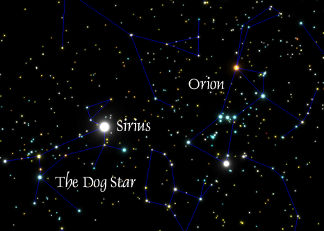 Sirius, the Dog Star in Canis Major