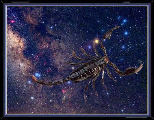 Constellation and Scorpion